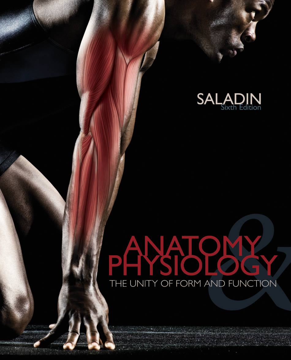 Großzügig Saladin Anatomy And Physiology 7th Edition Connect Ideen ...