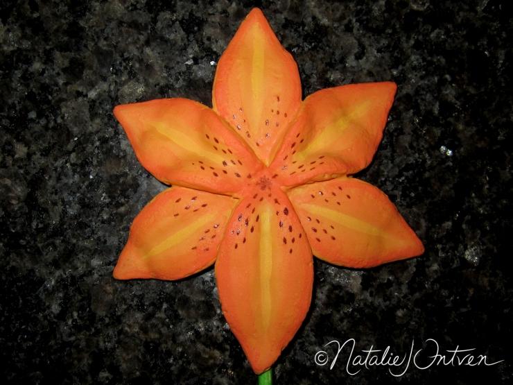 natalieintven_FlowerCookies_19